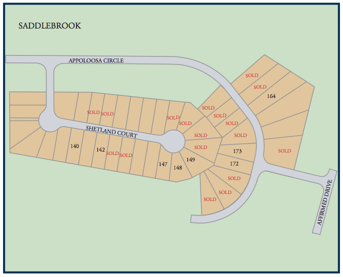 Communtiy map of Saddlebrook